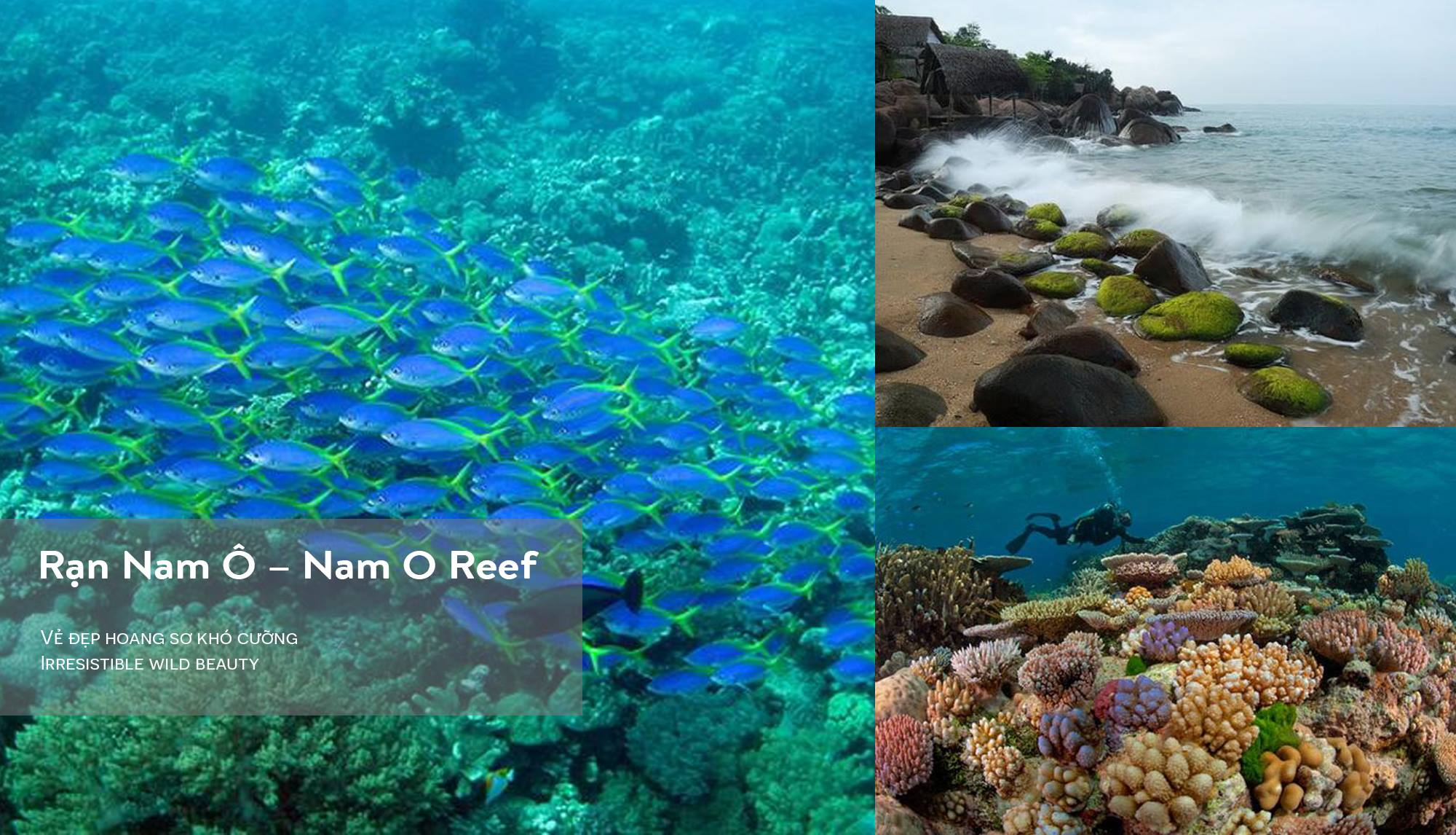 Nam O Reef - CHICLAND hotel